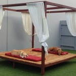 Outdoor-play-area-at-Luxe-Pet-Hotels-3